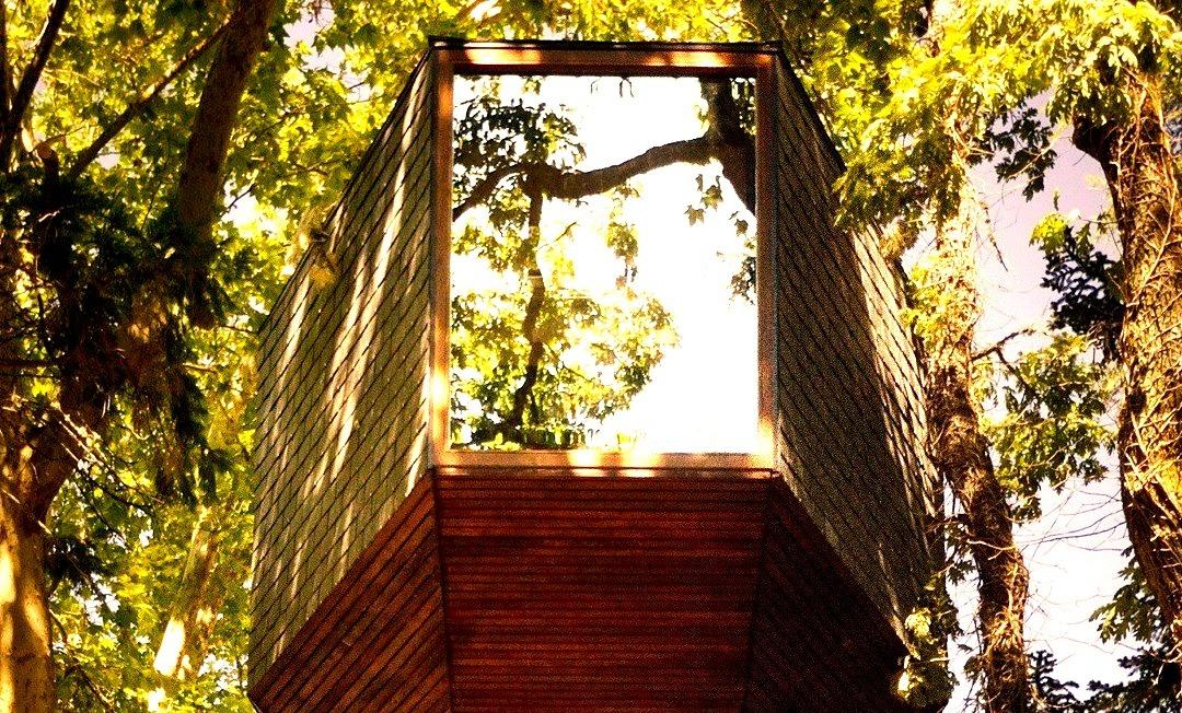 Travel, Treehouses, Best, Design, Nature
